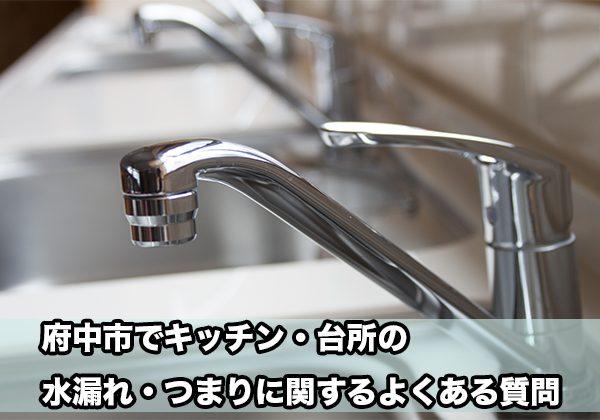 府中の台所・キッチンの水漏れ・つまり